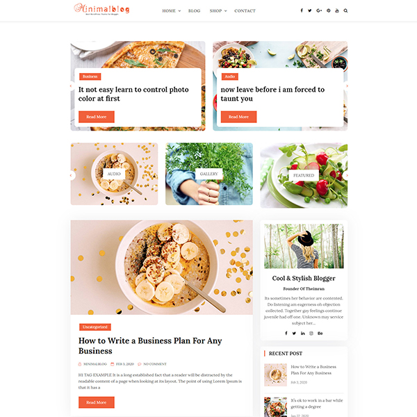 Best WordPress Themes for blogs and Ecommerce