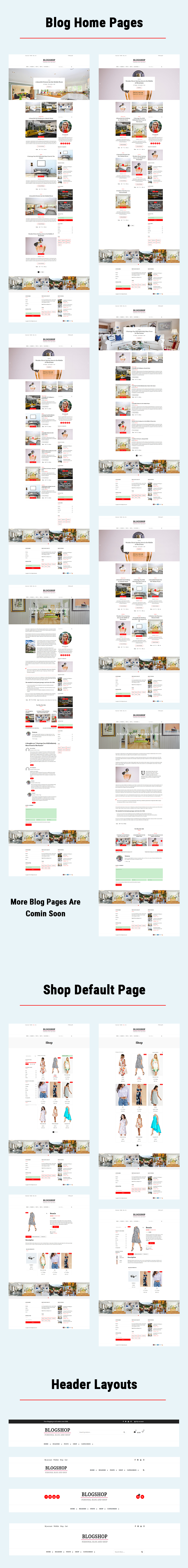 WordPress theme for Blogging and Ecommerce
